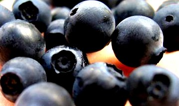 blueberries use